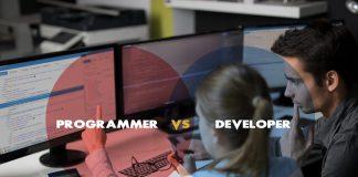 Programmer VS Developer